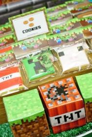 Minecraft 15
